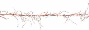 """Гирлянда-кластер, медная струна, """"Luca"""", 11 м, теплый белый, фото 3"""