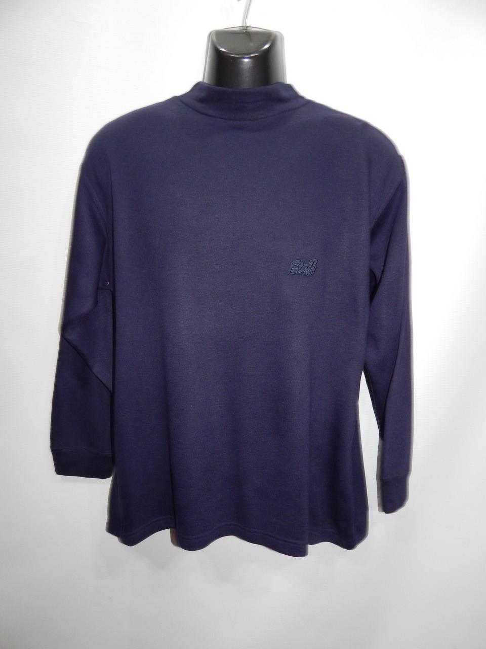 Мужская теплая кофта (свитшот) Ravision р.48-50 040SMT