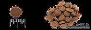 Сухой корм ACANA Sport&Agility для активных и спортивных собак всех пород, 11,4 кг, фото 2