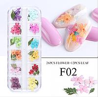 Сухоцветы для дизайна ногтей 02