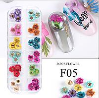 Сухоцветы для дизайна ногтей 05