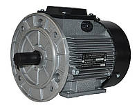 Электродвигатель трехфазный АИР 71 А2 (0,75кВт/3000об/мин) 220/380В крепление с фланцем (2081)