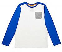 Футболка с длинными рукавами лонгслив для мальчика C&A (170/176) белая, фото 1