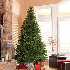Скоро Новый год! Выбираете новогоднюю елку?