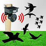 Відлякувачі голубів і птахів