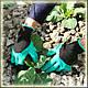 Рукавички з кігтями для саду і городу Garden Genie Gloves, фото 8