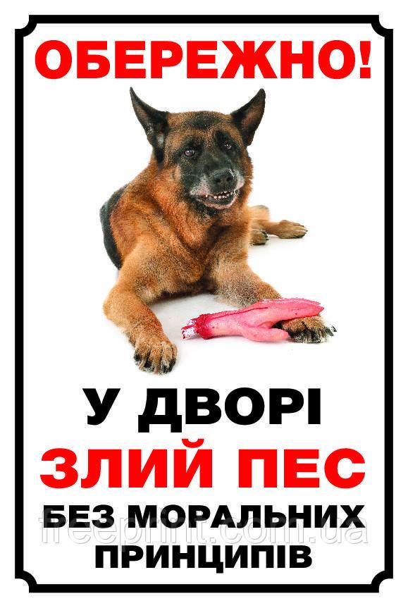 Табличка собака, осторожно собака, табличка с овчаркой. Печать по предоплате