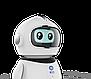 Умный робот YYD Learning Robot | интерактивная игрушка, фото 4