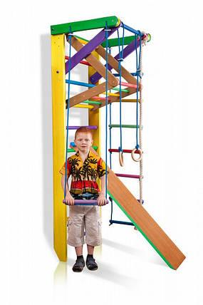 Спортивная лестница деревянная Юнга 3-220, фото 2