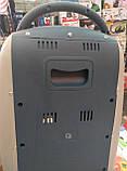 Тепловентилятор (обогреватель) инфракрасный галогенный Domotec DT-1606 1200W, фото 6