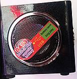 Портативная MP3 колонка Star SR-8931 (USB/FM/SDcard/пульт ДУ), фото 3