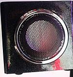 Портативная MP3 колонка Star SR-8931 (USB/FM/SDcard/пульт ДУ), фото 4