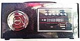 Портативная MP3 колонка Star SR-8931 (USB/FM/SDcard/пульт ДУ), фото 7