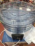 Електрична сушарка для фруктів і овочів Aurora AU 3371 (4 яруси), фото 2