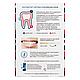 Система для отбеливания зубов GlOBAL WHITE (отбеливающий гель+зубная паста+кисточка+ретрактор), 15мл, фото 6