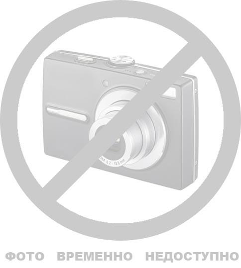 Шина на тачку 4,00-10 с камерой 4PR