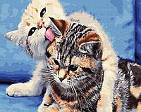 Картина рисование по номерам Никитошка Котята BRM31132 40х50 см Коты и собаки набор для росписи краски, кисти,