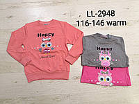 Кофта утеплена для дівчаток Sincere, 116-146 pp. Артикул: LL2948