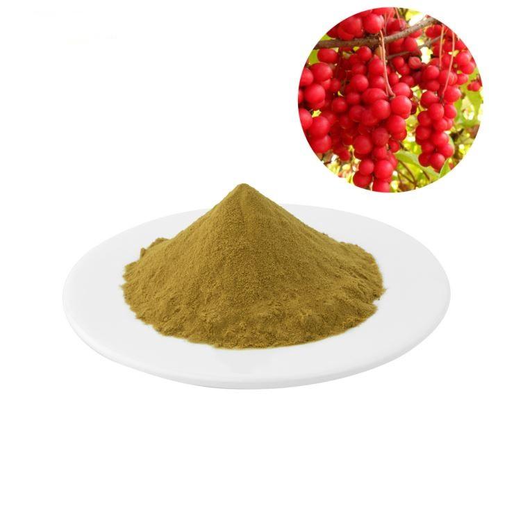 Экстракт Лимонника Китайского Порошок 1 кг