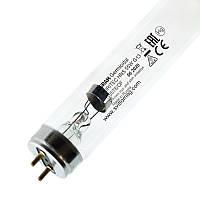 Лампа бактерицидная ультрафиолетовая HNS 55w OSRAM G13 PURITEC UV-C T8