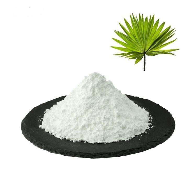 Со Пальметто, Saw Palmetto Extract Порошок 1 кг
