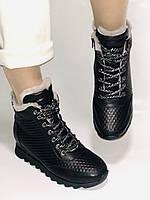 Alpino.Туреччина. Зимові черевики-кросівки на натуральному хутрі, Натуральна шкіра. 37, 38,39, фото 3