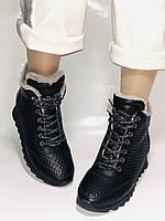 Alpino.Туреччина. Зимові черевики-кросівки на натуральному хутрі, Натуральна шкіра. 37, 38,39, фото 2