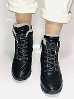 Alpino.Туреччина. Зимові черевики-кросівки на натуральному хутрі, Натуральна шкіра. 37, 38,39, фото 8