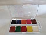 Акварель Гамма 10 цветов медовая полусухая 312044 Гамма, фото 2
