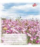 Тетрадь Бриск, Тетрада, зошит украины картонная обложка 12л. клетка в ассортименте TB12KLTET, фото 3
