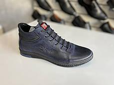 Мужские демисезонные кроссовки Polbut размеры 38,39,40,41,42,43,44-45, фото 3