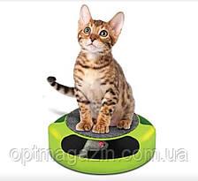 Іграшка для котів Злови Мишку Catch The Mouse, фото 2