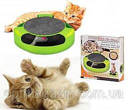 Іграшка для котів Злови Мишку Catch The Mouse