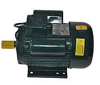 Электродвигатель однофазный RL 100 S2 (4 кВт / 3000 об/мин) 220В крепление на лапах (1081)