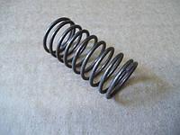 Пружина газовой колонки старого образца к газоводяному узлу