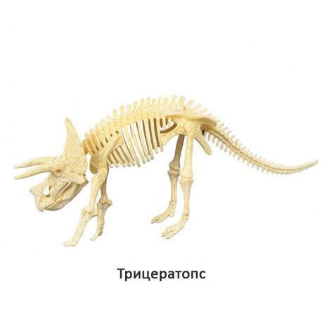 """Конструктор-скелет """"Трицератопс"""" Mideer Toys"""