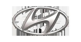 Бризковики для Hyundai (Хюндай)