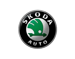 Бризковики для Skoda (Шкода)