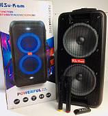 Акустическая система PARTYBOX Su Kam 1010, 400 Ватт, 2 беспроводных микрофона, Караоке, Светомузыка, Чёрная
