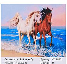 Картина по номерам KTL 1882 40х30см, в коробке