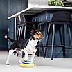 Игрушка для домашних собак диск с пищащим звуком Woof Glider 171287, фото 2