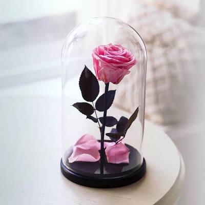 Роза в колбе A78 Большая Розовая 182500