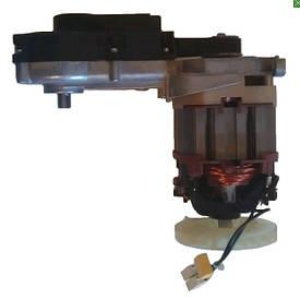 Електродвигун в комплекті з редуктором