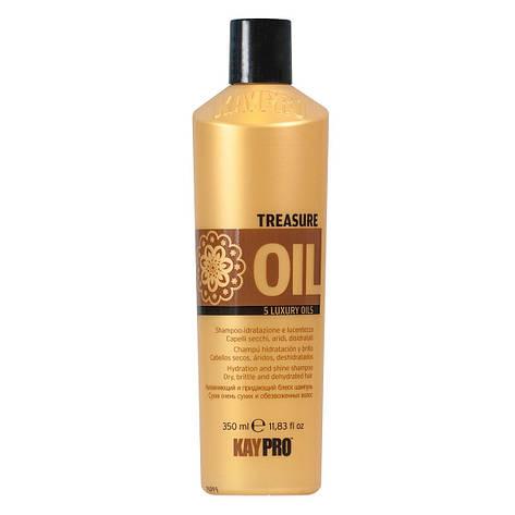 Шампунь Драгоценное масло Kay Pro Treasure Oil 350 мл, фото 2