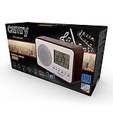 Цифрове радіо Camry CR 1153, фото 5