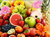 """Зовсім свіжа і актуальна стаття """"Їжа як шлях до здоров'я та імунітету в умовах коронавіруса"""" з'явилася в розділі статей"""