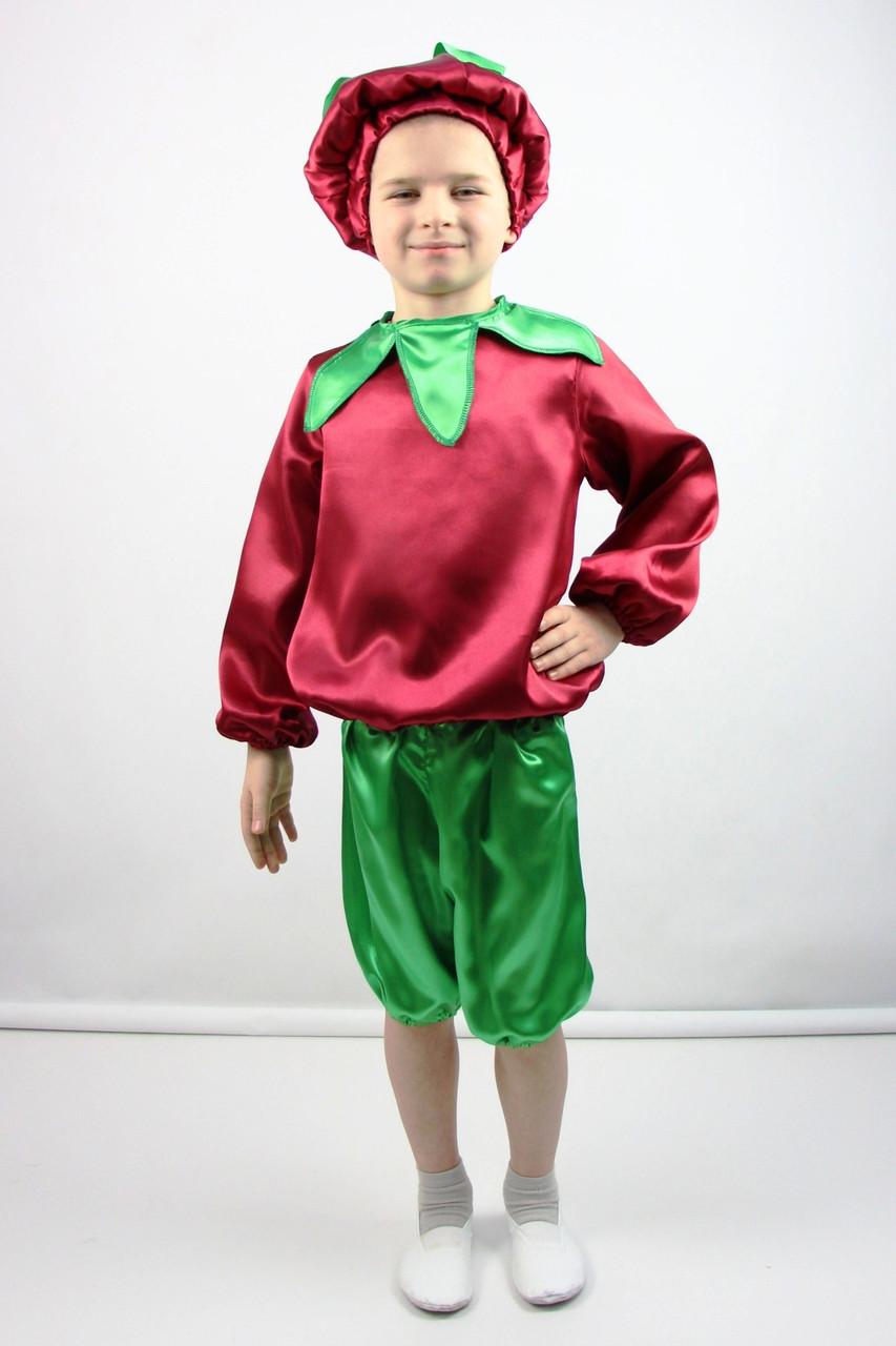 Карнавальный костюм Буряк №2