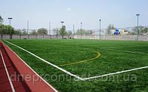 Искусственная трава Limonta TangoTurf F 40, фото 2