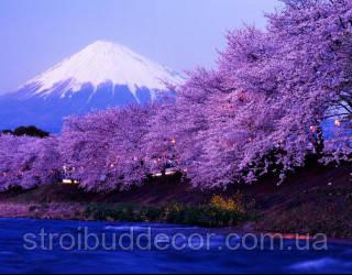 Фотообои цветы, гора разные текстуры , индивидуальный размер