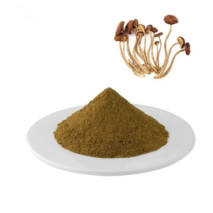 Чистый Натуральный Экстракт Агроцибов Порошок 1 кг